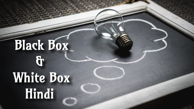 White Box And Black Box Testing In Hindi