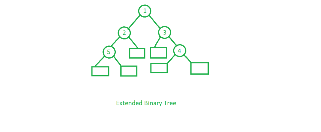 Extended Binary Tree In Hindi